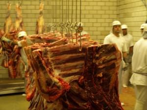 Fleisch. Foto: sia
