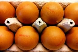 Die Produktion von Eiern ist ein industriell organisierter Prozess. Foto: sia