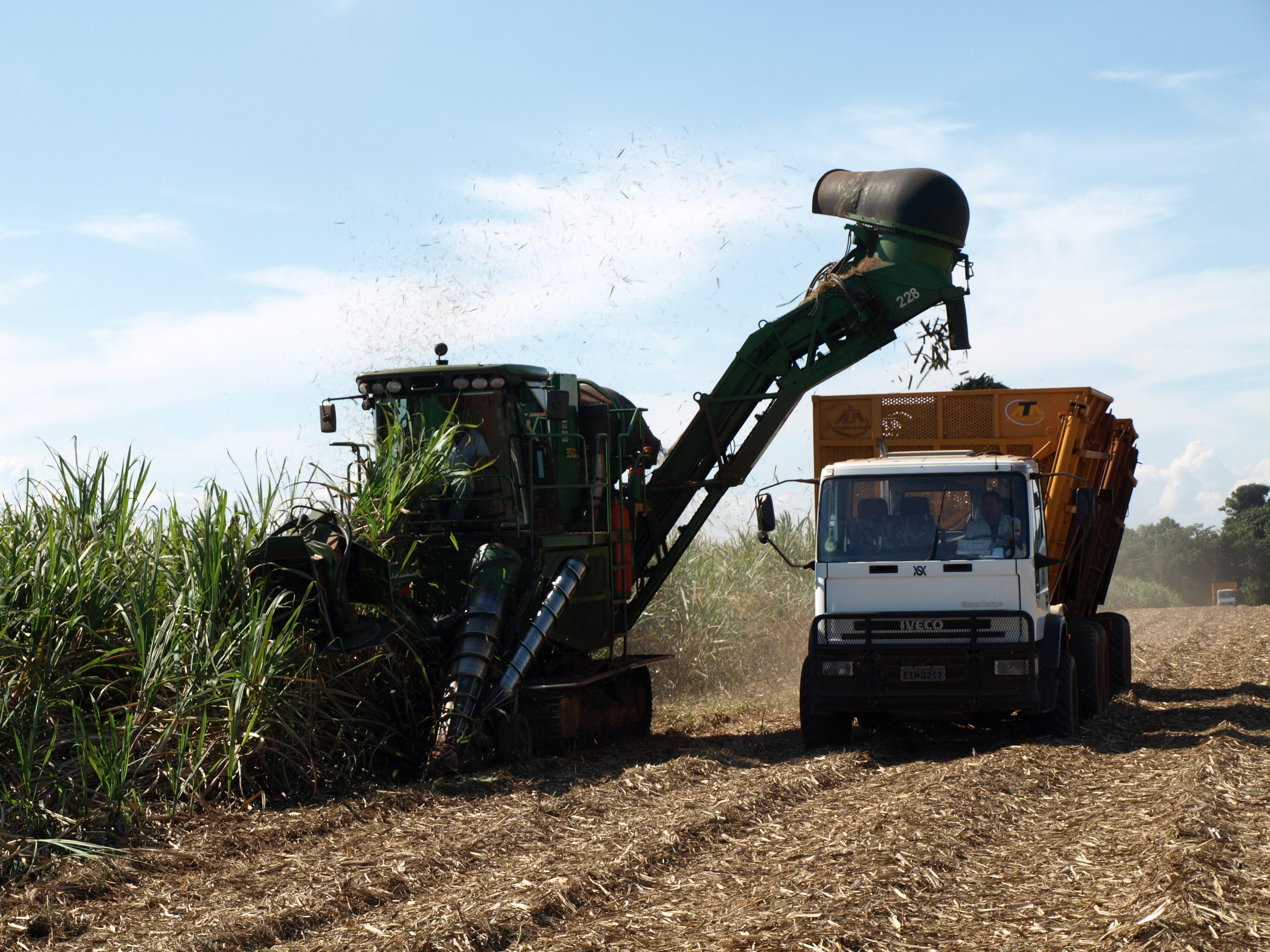 Monsanto, der unheimliche Konzern