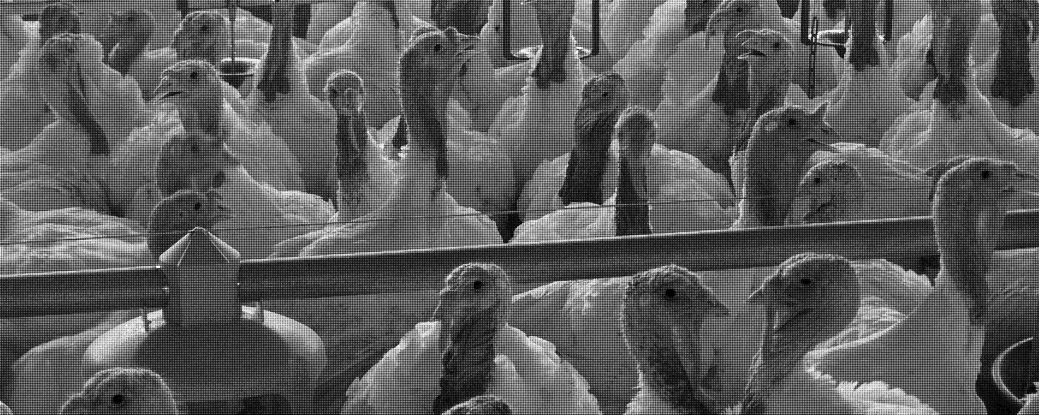 Die Keule – Antibiotika in der Tierhaltung
